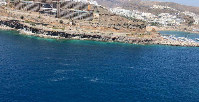 Confirman la presencia de una mancha de microalgas en la costa de Mogán