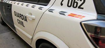 Detenida en Granada acusada de robar en una casa y tirar tres perros por el balcón