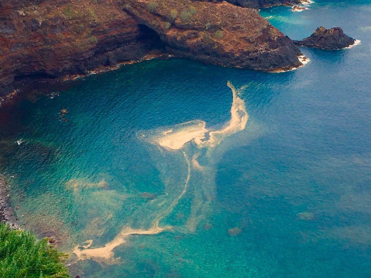 Imagen de las microalgas en Canarias y una de las portadas de DIARIO DE AVISOS sobre esta crisis. DA