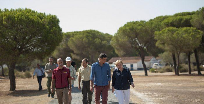 Merkel y Pedro Sánchez visitan el centro referente en conservación del lince