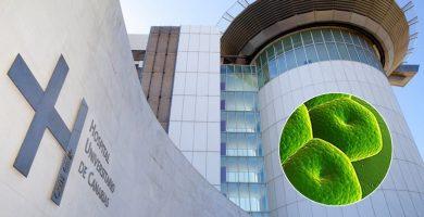 La bacteria de la UVI del HUC llega esta semana al Parlamento