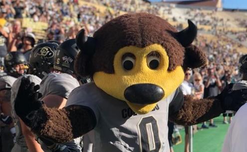 Esta mascota de fútbol americano se confunde y se dispara en la entrepierna