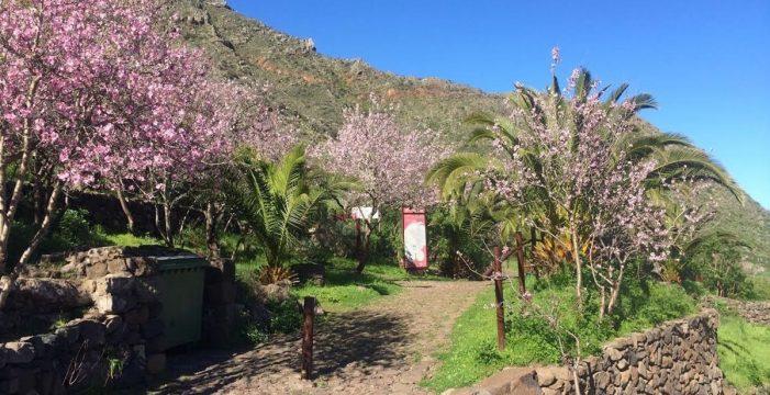 Abren dos senderos autoguiados en Buenavista