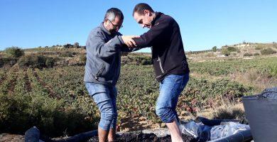 Nace Las Pisadas, nuevo proyecto de Bodegas Torres en La Rioja
