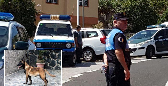 """Fallece un bebé en Fasnia por las mordidas del perro de la familia: """"¡Se muere, el niño se muere! ¡Ayúdenme por favor!"""""""