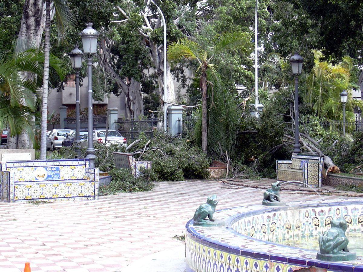 MM DELTA11_488 Plaza los patos