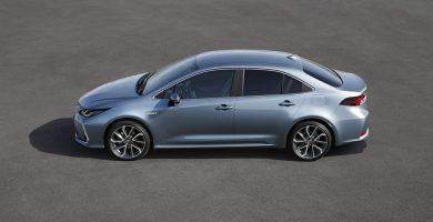 Toyota Corolla Sedan: un nuevo miembro en la familia Toyota Corolla hybrid