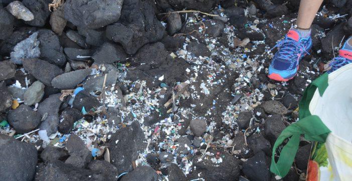 Los microplásticos llegan a las costas canarias cargados con hasta 81 contaminantes