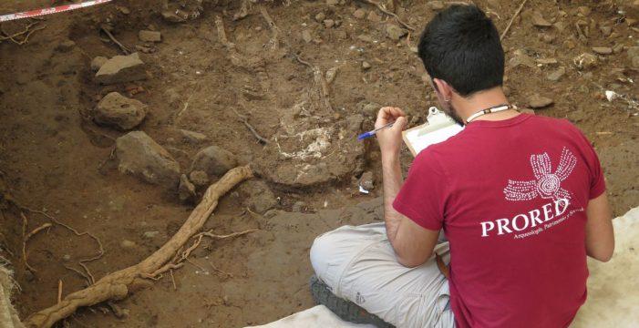Estudian cómo mostrar la excavación arqueológica de la plaza de la Catedral de La Laguna