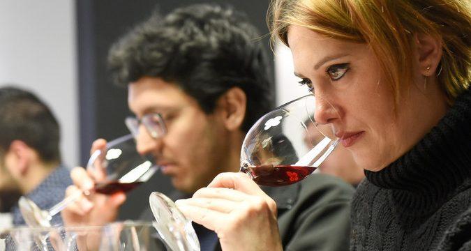 La Guía Gourmet otorga más de 90 puntos a diez vinos canarios