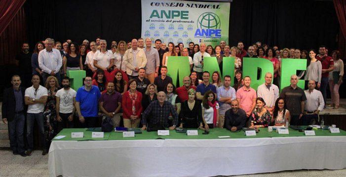 El sindicato ANPE vuelve a ganar las elecciones en el profesorado canario