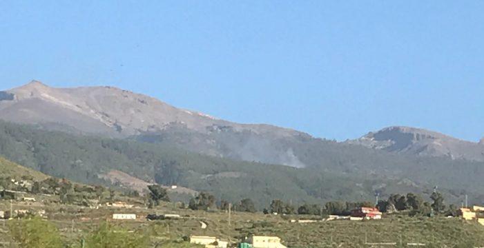 Perimetrado el conato de incendio en Granadilla que afectó a 500 metros de pinar