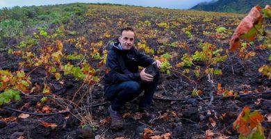 Sal y pimienta: El Master of Wine David Forer elogia el vino de El Hierro
