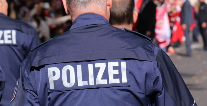 Suspenden un concierto de rock en Alemania por los saludos nazis del público