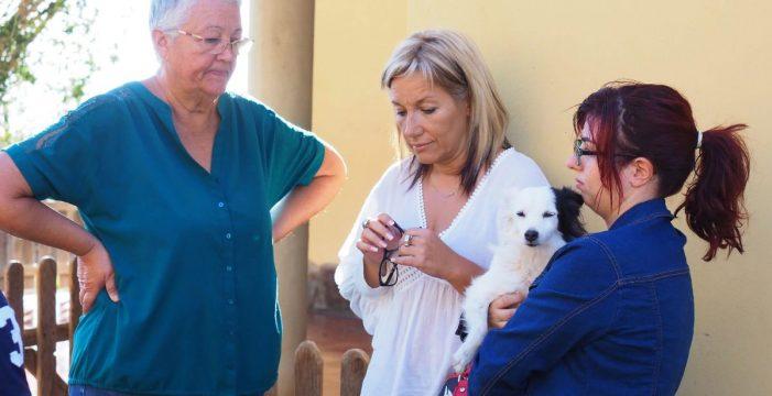 """La presidenta de Addanca """"esconde"""" a sus perros para no ser desalojados"""