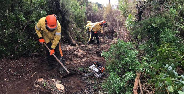 Extinguido el incendio forestal que afectó a 136 hectáreas en Garafía