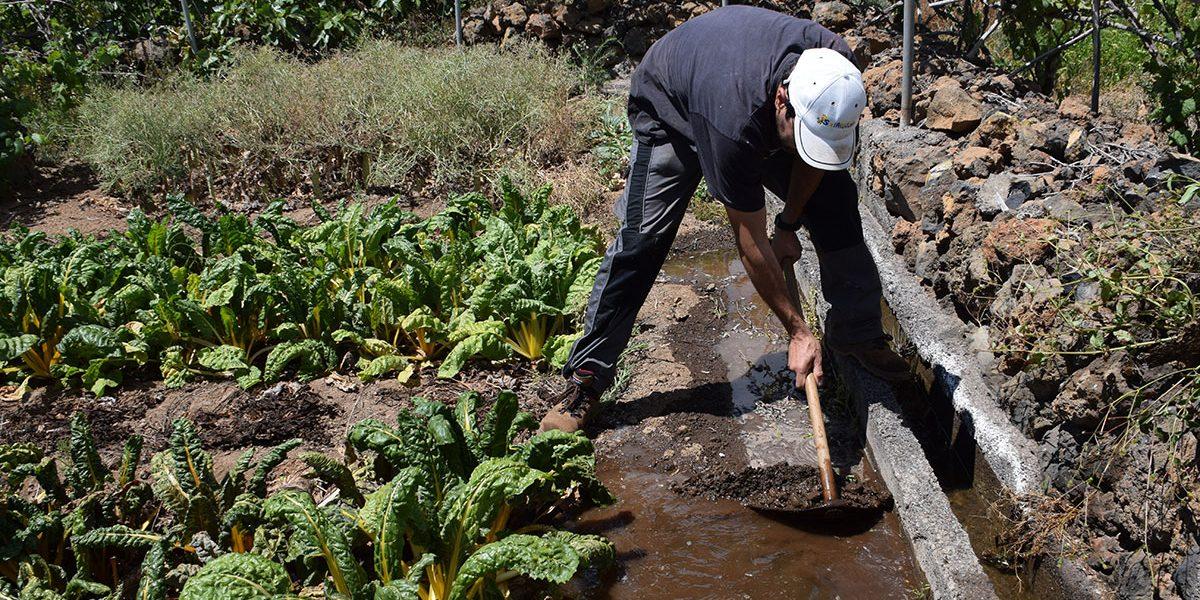 Canarias saldrá a la calle contra el 'no' de Madrid a la ayuda del agua de riego