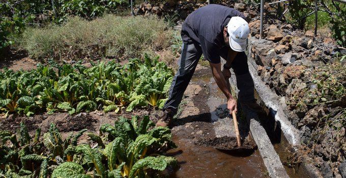 El gobierno de Sánchez firma la última resolución y transferirá los ocho millones de riego a Canarias