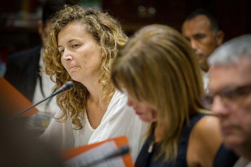 Ornella Chacón, consejera del Gobierno de Canarias entre junio de 2015 y diciembre de 2016. / DA