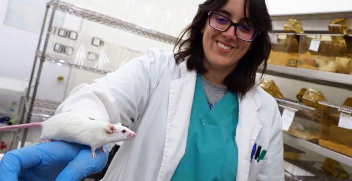El animalario de la ULL participa en 29 proyectos de investigación
