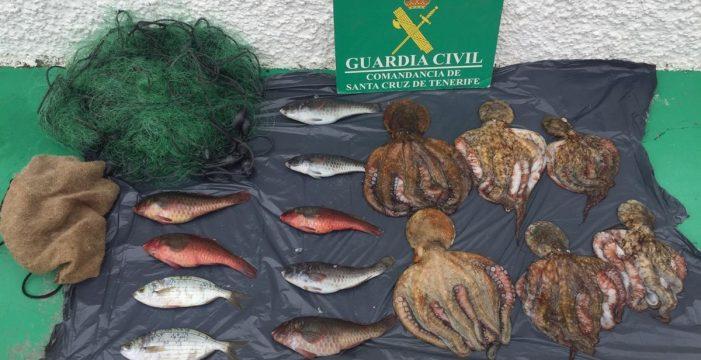 Incautan 15 kilos de pescado capturado de forma ilegal en Las Caletillas