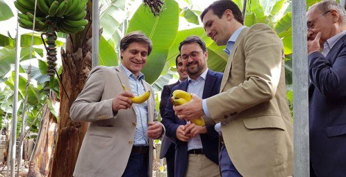 """Casado: """"Donde más se siente la unidad nacional es en Canarias"""""""