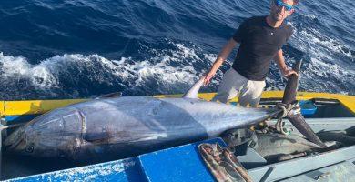 Pescadores de El Hierro rompen récord tras pescar un atún de 410 kilos