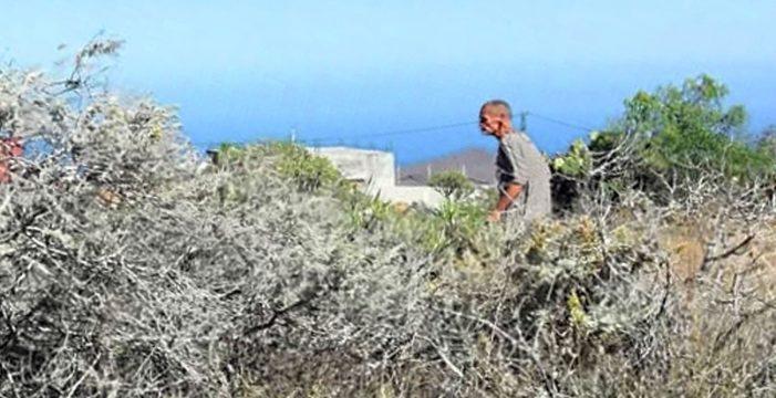 Santa Cruz incorpora sus drones a la búsqueda del desaparecido Donato