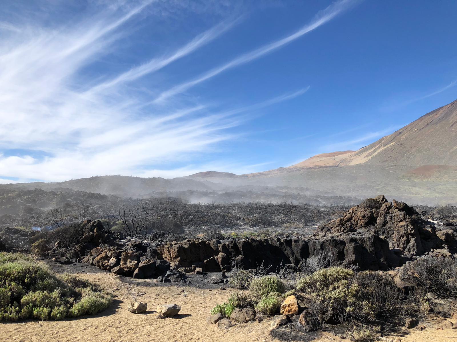 Logran estabilizar el incendio del Teide y valoran darlo por controlado. | FOTO: BRIFOR
