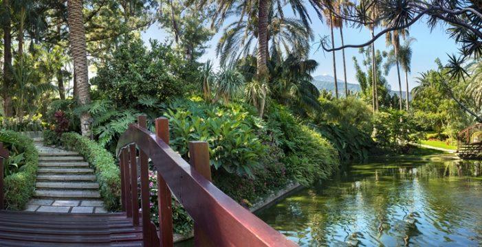 The Slim,  restaurante saludable del Hotel Botánico