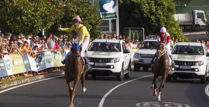 """Las carreras de caballos y el mundo de la hípica """"tropiezan"""" con la seguridad del tráfico"""