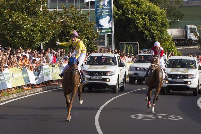 """Las carreras de caballos y el mundo de la hípica """"tropiezan"""" con la seguridad del tráfico. DA"""