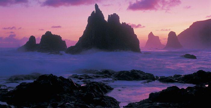 Naturaleza y belleza nocturna