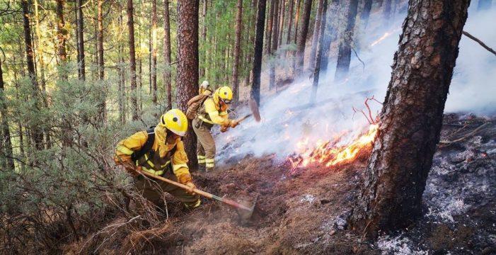 Declaran la alerta por riesgo de incendios forestales en las islas occidentales y Gran Canaria