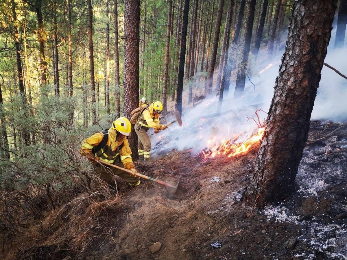 Efectivos de la BRIF de Puntagorda intervienen en las labores de extinción del incendio de Gran Canaria. EP