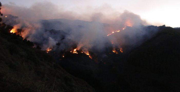 El fuego grancanario, en fase de contención, afecta a 12.000 hectáreas y hay 10.000 evacuados