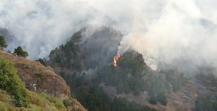 Se producen pequeñas reactivaciones en el incendio de Gran Canaria y se pide no subir a la cumbre