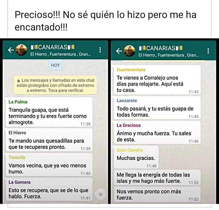 El Chat De Whatsapp Que Causa Furor Y Emociona Con El Incendio