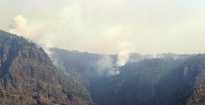 """El incendio en Gran Canaria, en """"fase de estabilización"""" y con un perímetro de 112 kilómetros"""