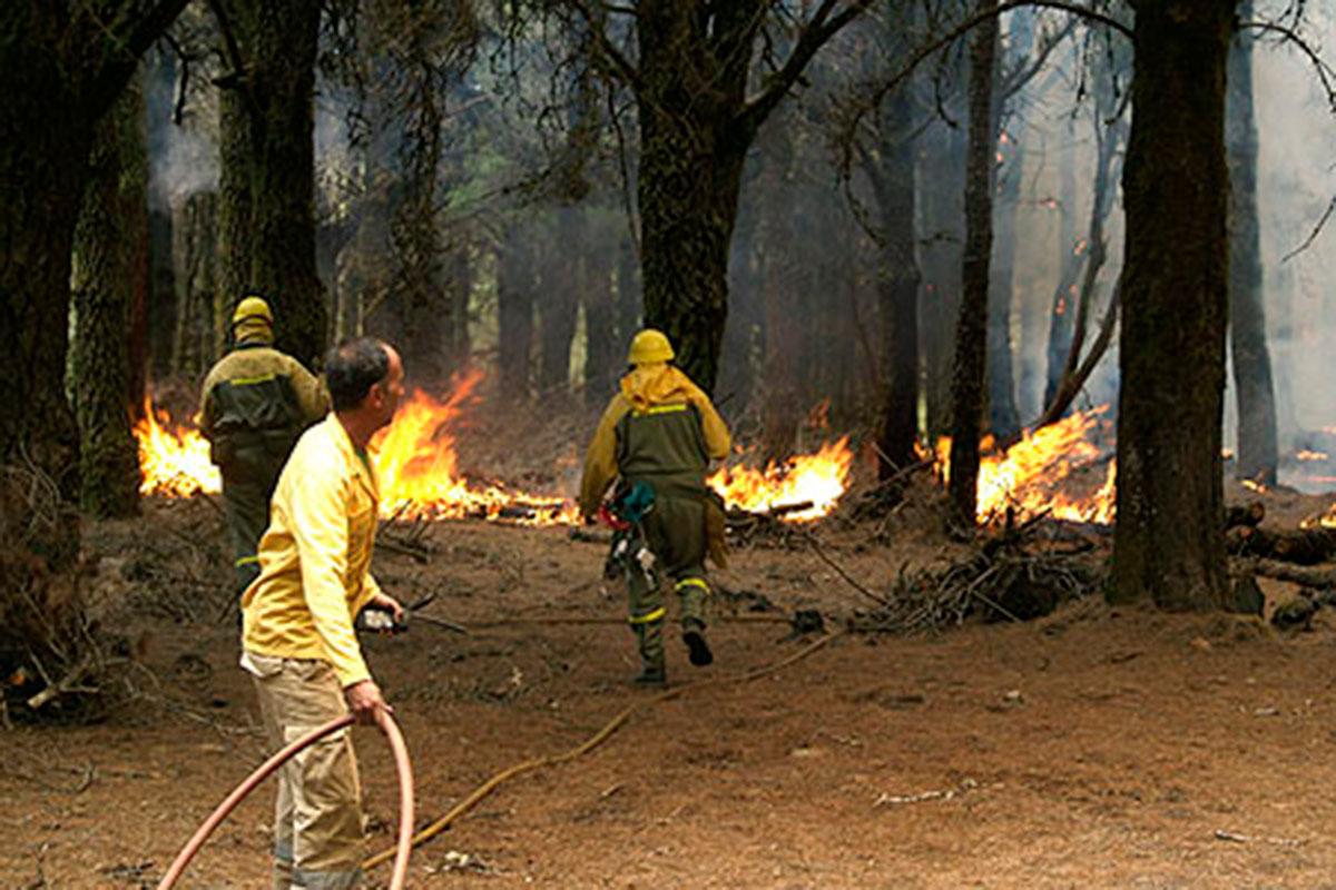 incendios canarias el hierro 2006