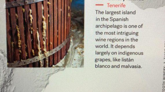 La revista 'Newsweek' incluye los vinos canarios entre los mejores del mundo