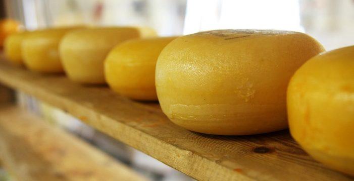 Este es el único queso canario elegido como uno de los mejores del mundo