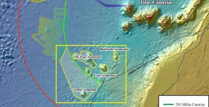 Los montes submarinos al suroeste de Canarias guardan un 'tesoro'