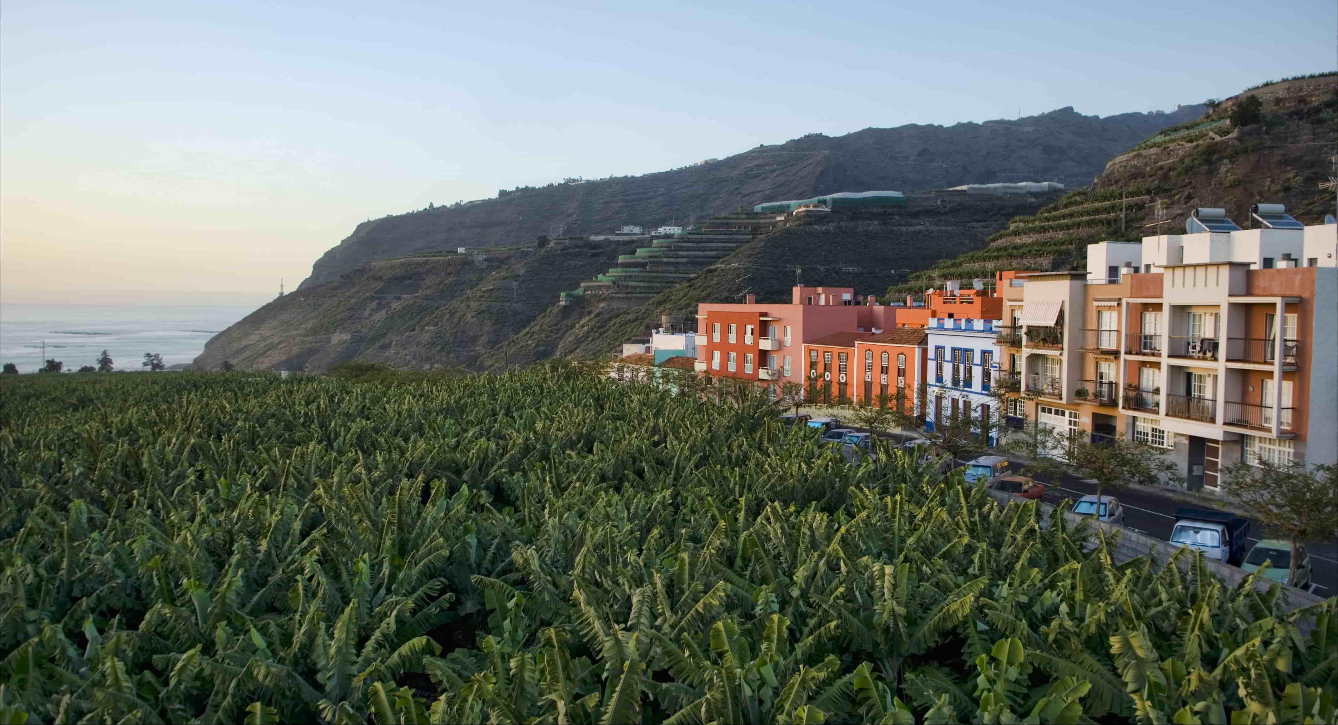 El Ayuntamiento ha trasladado al Instituto Canario de la Vivienda su intención de ceder terrenos