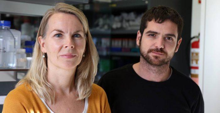 Investigadores del HUC descubren nuevas estrategias para la detección y el tratamiento del cáncer