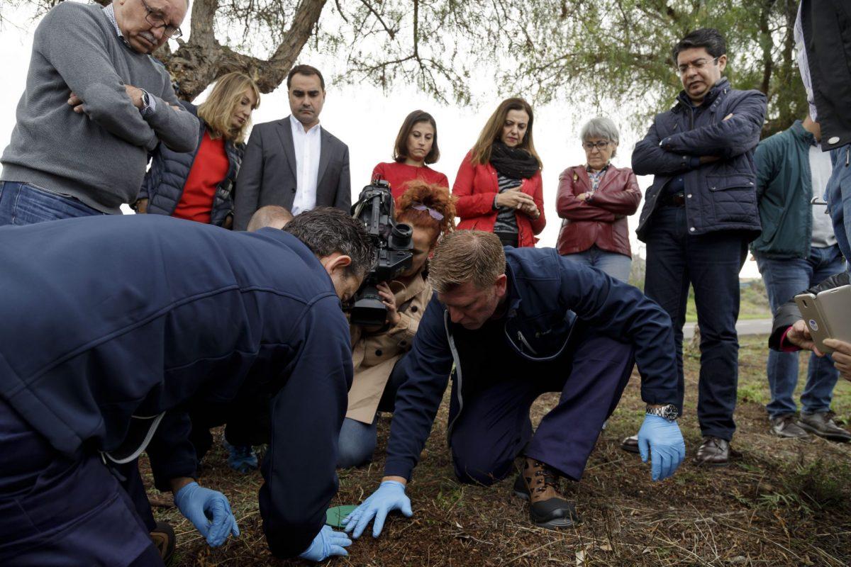 La colocación de los cebos con termicida comnezó ayer en la urbanización Parque Atlántico, en el mismo punto donde apareció por pimera vez la plaga. DA