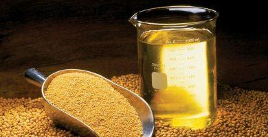 Este popular aceite utilizado para freír entra en la 'lista negra' por sus riesgos para la salud