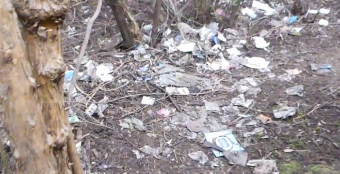 Bolsas, botellas y preservativos inundan la Mesa Mota