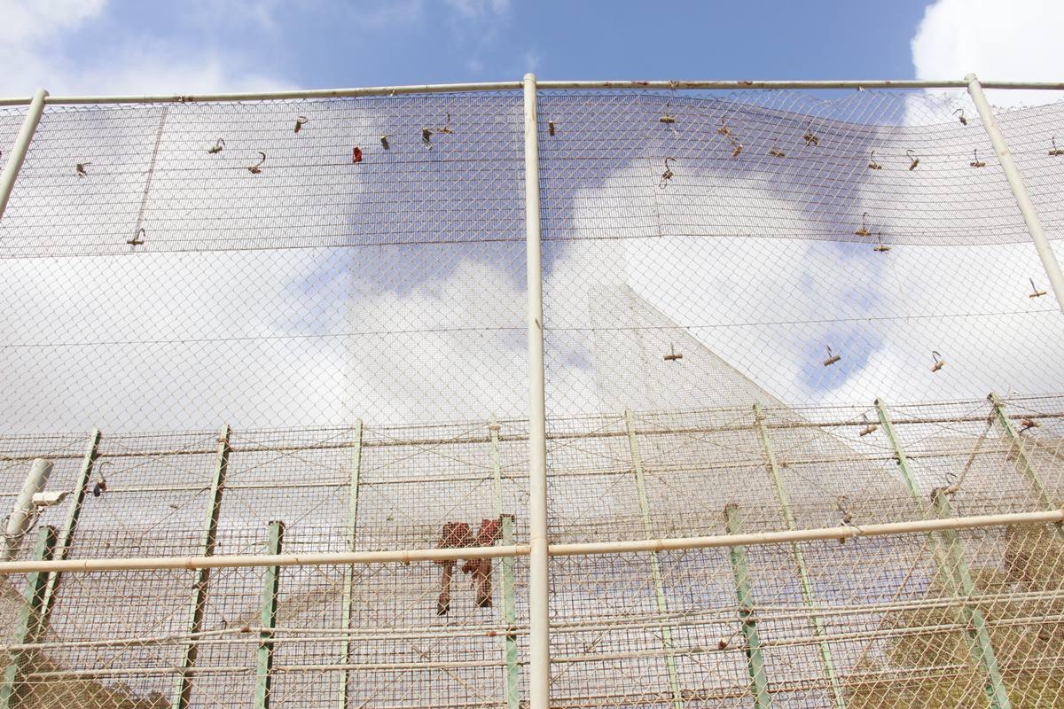 La valla de Melilla. EP