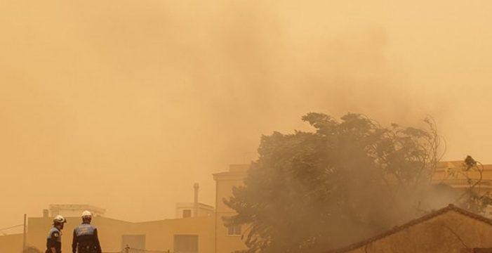 Los incendios de Tenerife, salvo uno en Santa Úrsula, ya están controlados